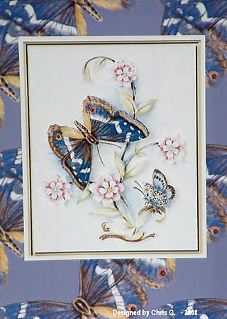 ChrisH blue butterfly1