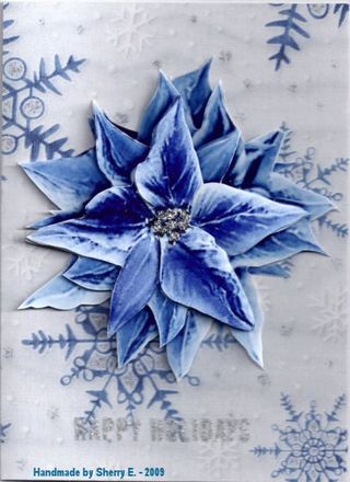 SherryE Blue Poinsettia