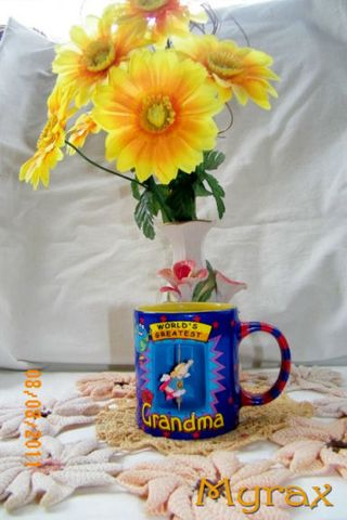 Thelma favorite cup