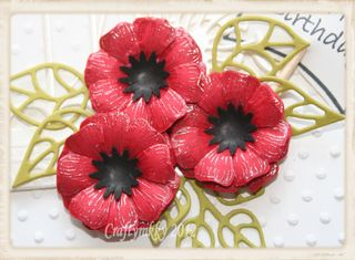 Trish poppy close up card