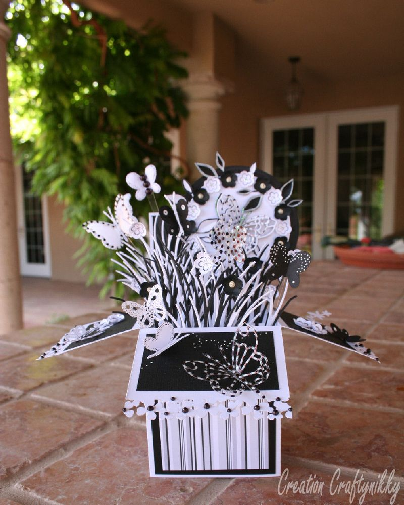 Craftynikky B&W butterfly card in a box 2