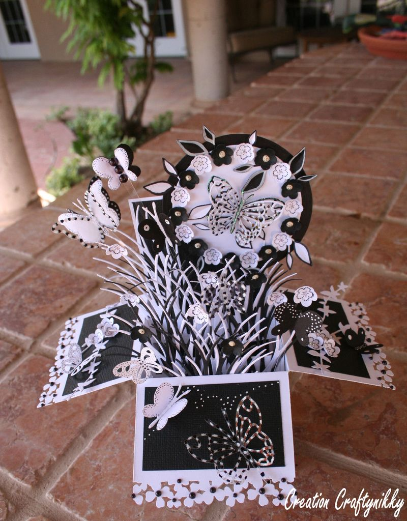 Craftynikky B&W butterfly card in a box 3