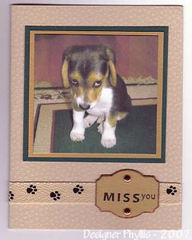 Phyllis_sad_dog_photo_card