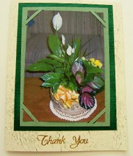 Jo_annes_thank_you_card_for_present