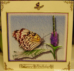 Liz_b_happy_birthday_butterfly_2