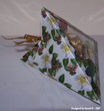 Naomi_d_triangle_box_side_view