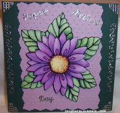 Jo_anne_h_purple_flower_100_3936
