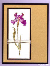 Phyllis_iris_flower_with_cord_and_ribbon