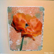 Poppy_card_by_tricia_resized